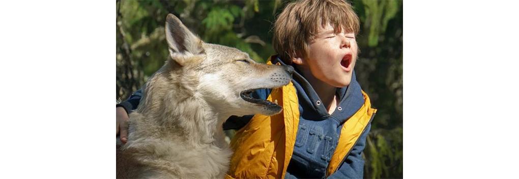 EO Telefilm Taiki wint prijzen in Rusland