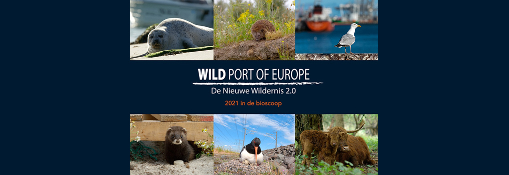 Veldkijker en EMS Films produceren Wild Port of Europe