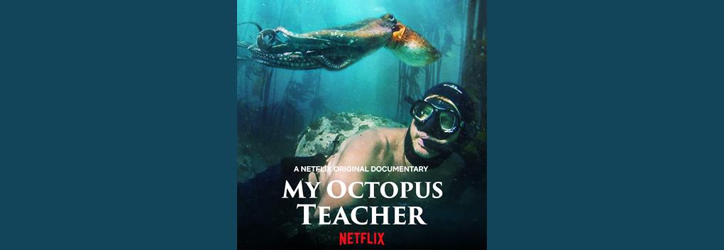 Ellen Windemuth blij met Oscar voor My Octopus Teacher